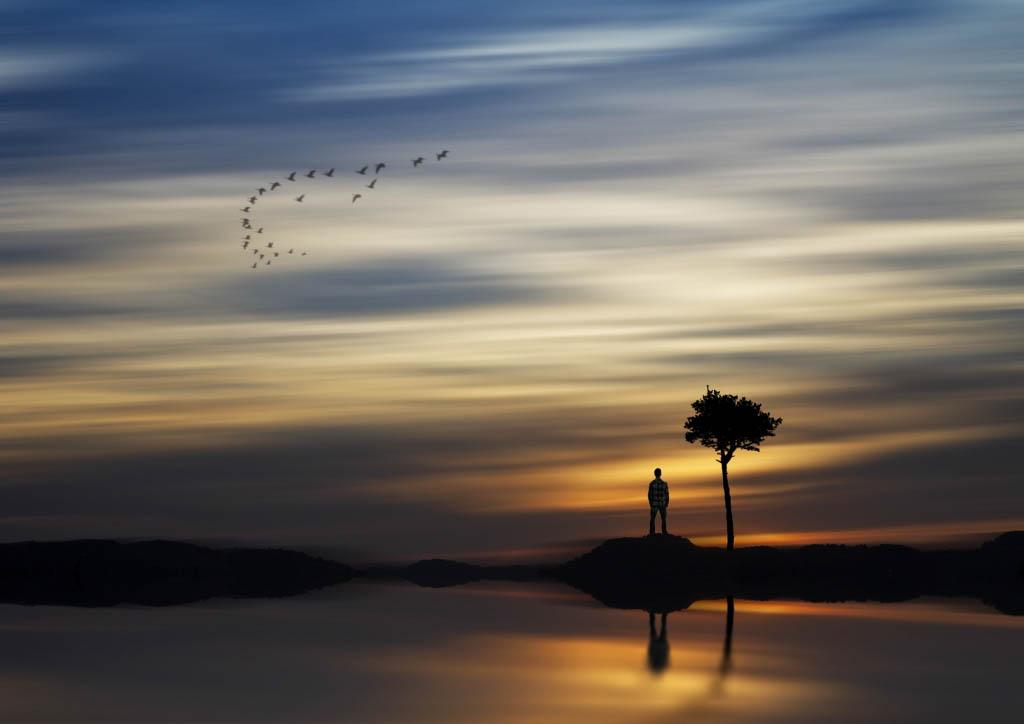 El Foton 2015. Creatividad Fotográfica. Ganador Rafael Mengual Caucera  con la foto El pensador - Tomada en España el 10-02-2015