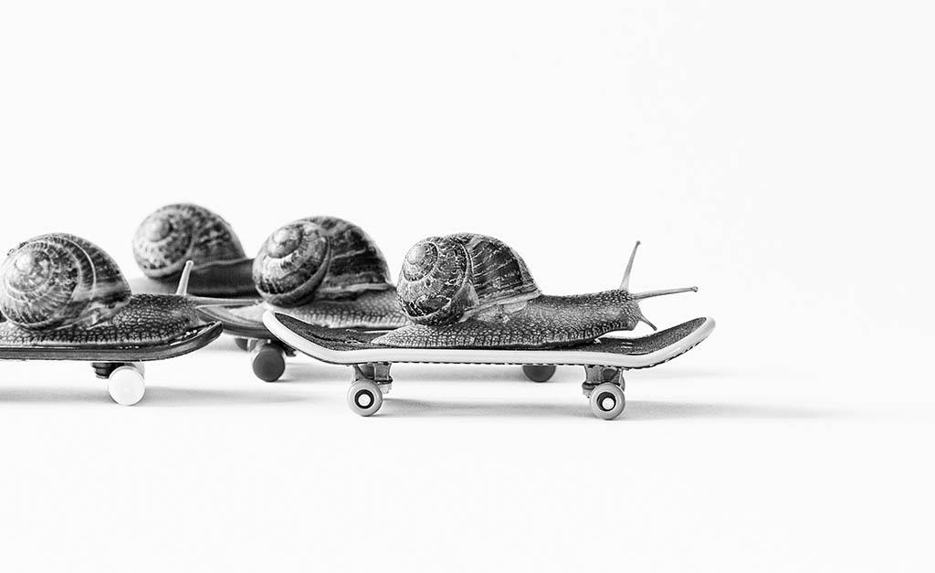 El Foton 2015. Creatividad Fotográfica. Cuarto Puesto. Tomás Melgosa Sebastián. CARRERA DE CARACOLES - Tomada en burgos el 13/04/2015